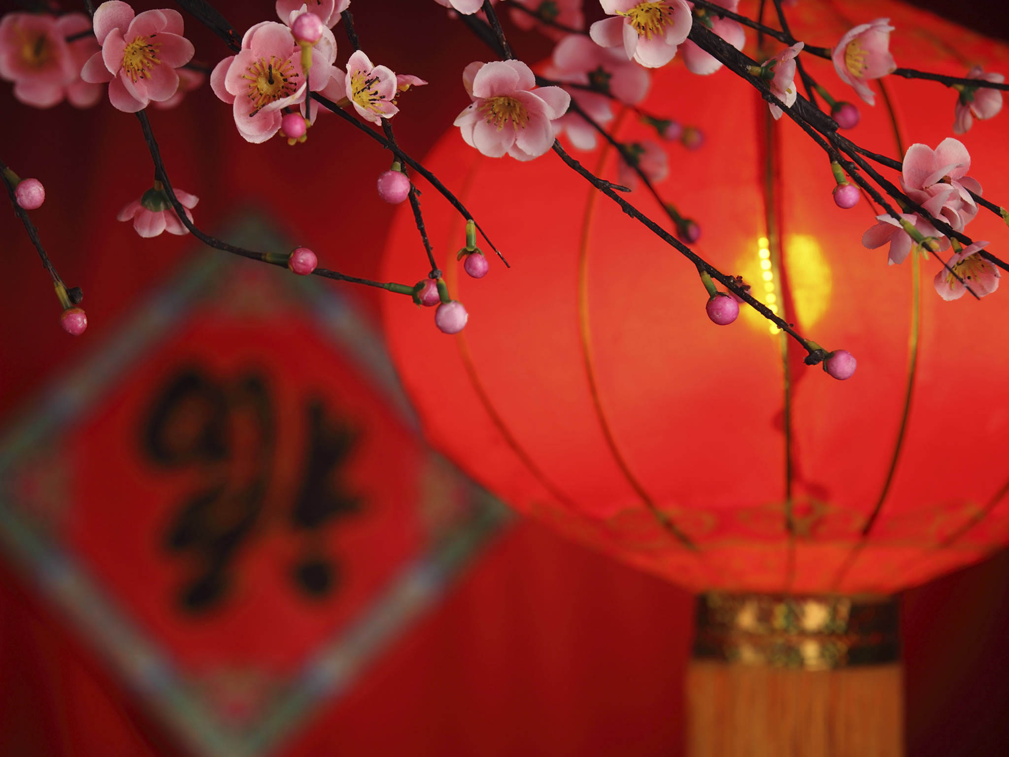 Chinese New Year High Quality Background on Wallpapers Vista