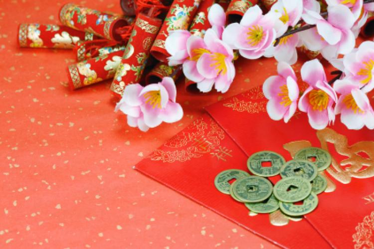 Chinese New Year Backgrounds, Compatible - PC, Mobile, Gadgets| 750x501 px