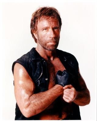 Nice wallpapers Chuck Norris 319x397px
