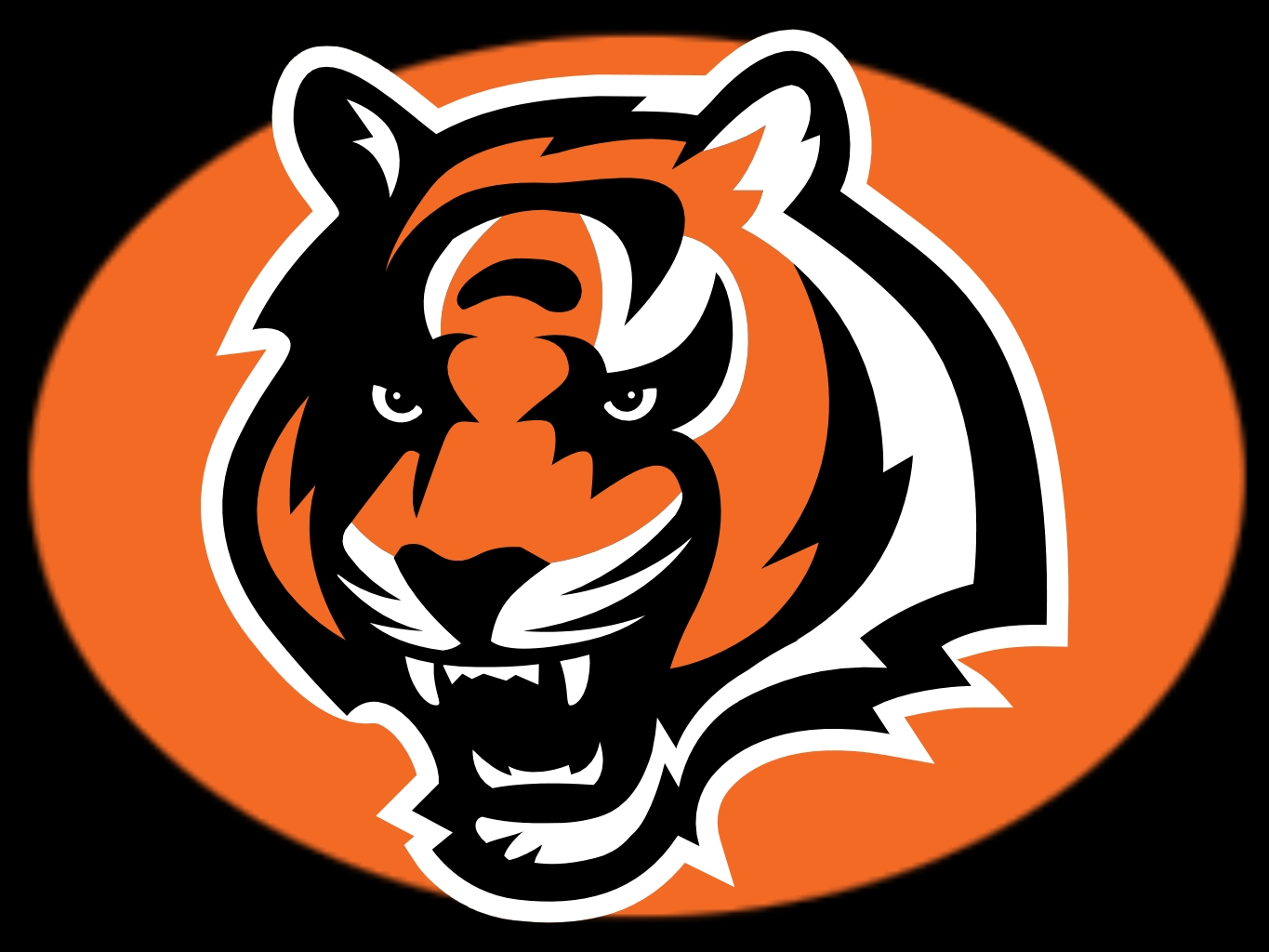 Cincinnati Bengals High Quality Background on Wallpapers Vista