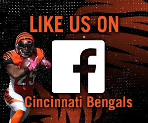 Nice wallpapers Cincinnati Bengals 300x250px