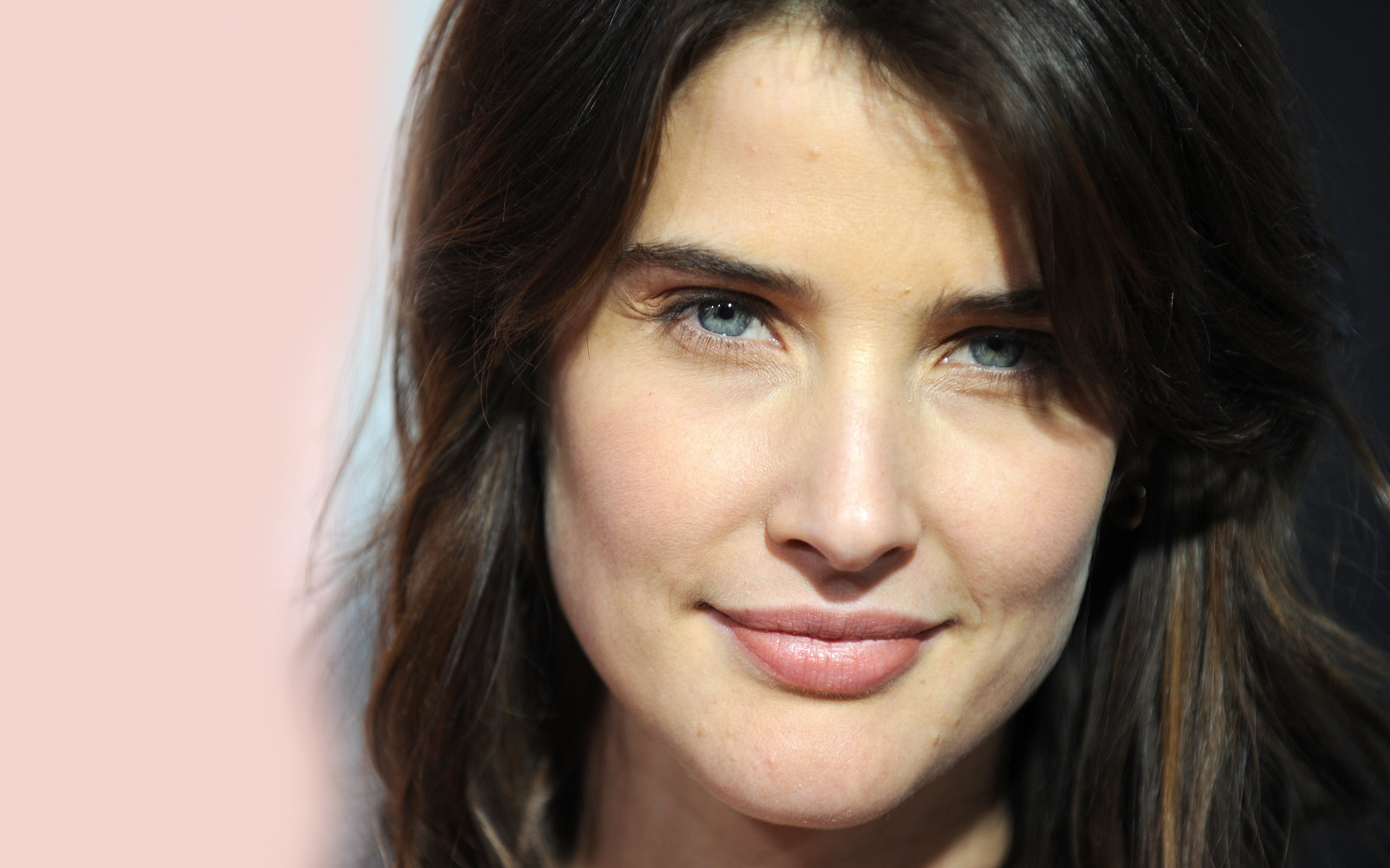 Cobie Smulders High Quality Background on Wallpapers Vista