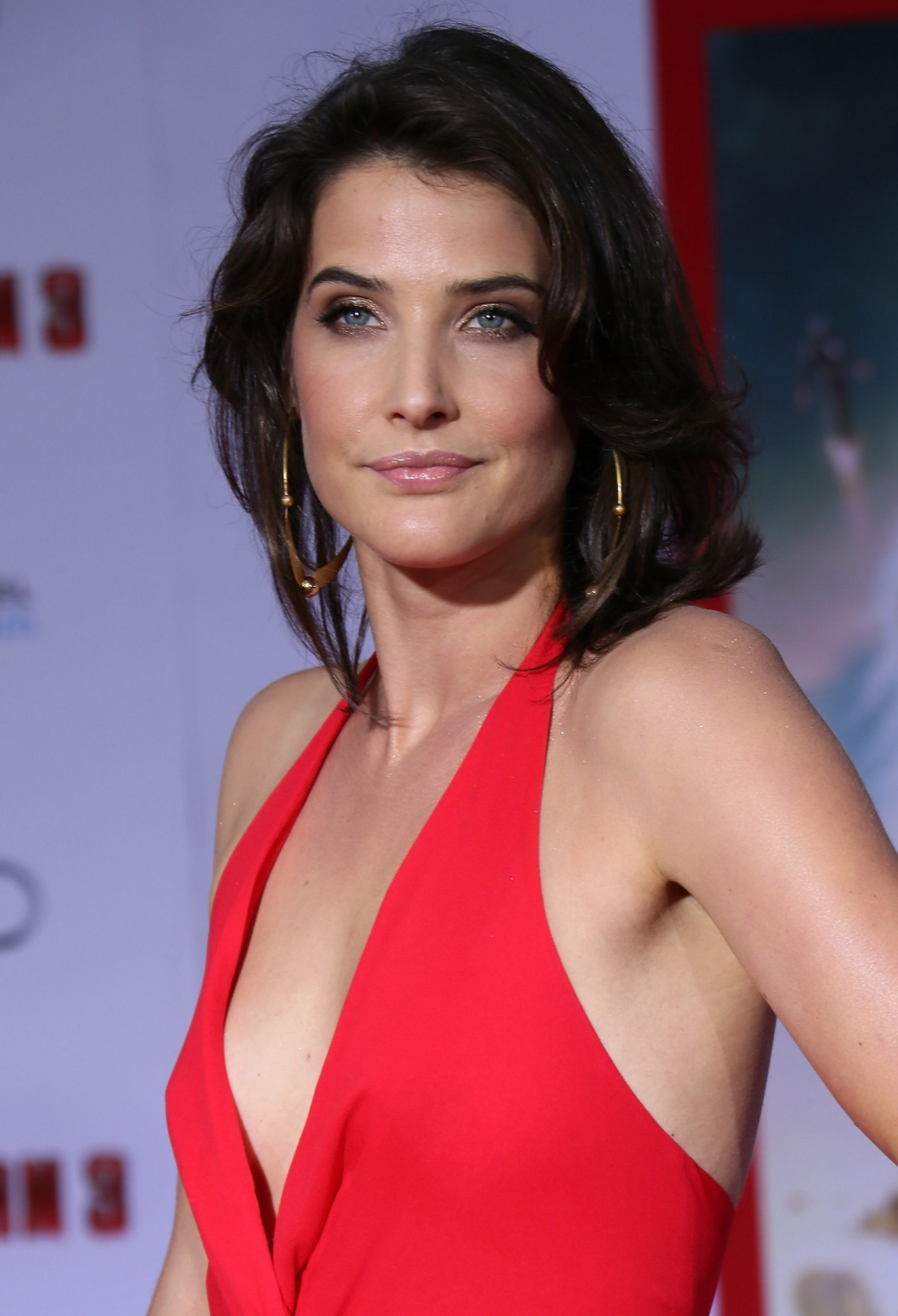 Cobie Smulders Pics, Celebrity Collection