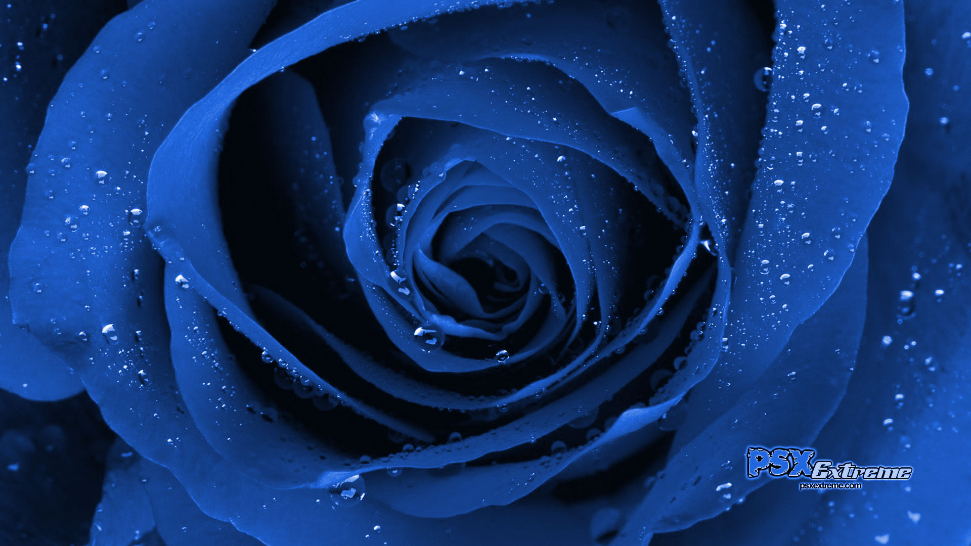 HD Quality Wallpaper   Collection: Abstract, 1920x1080 Cool Blue