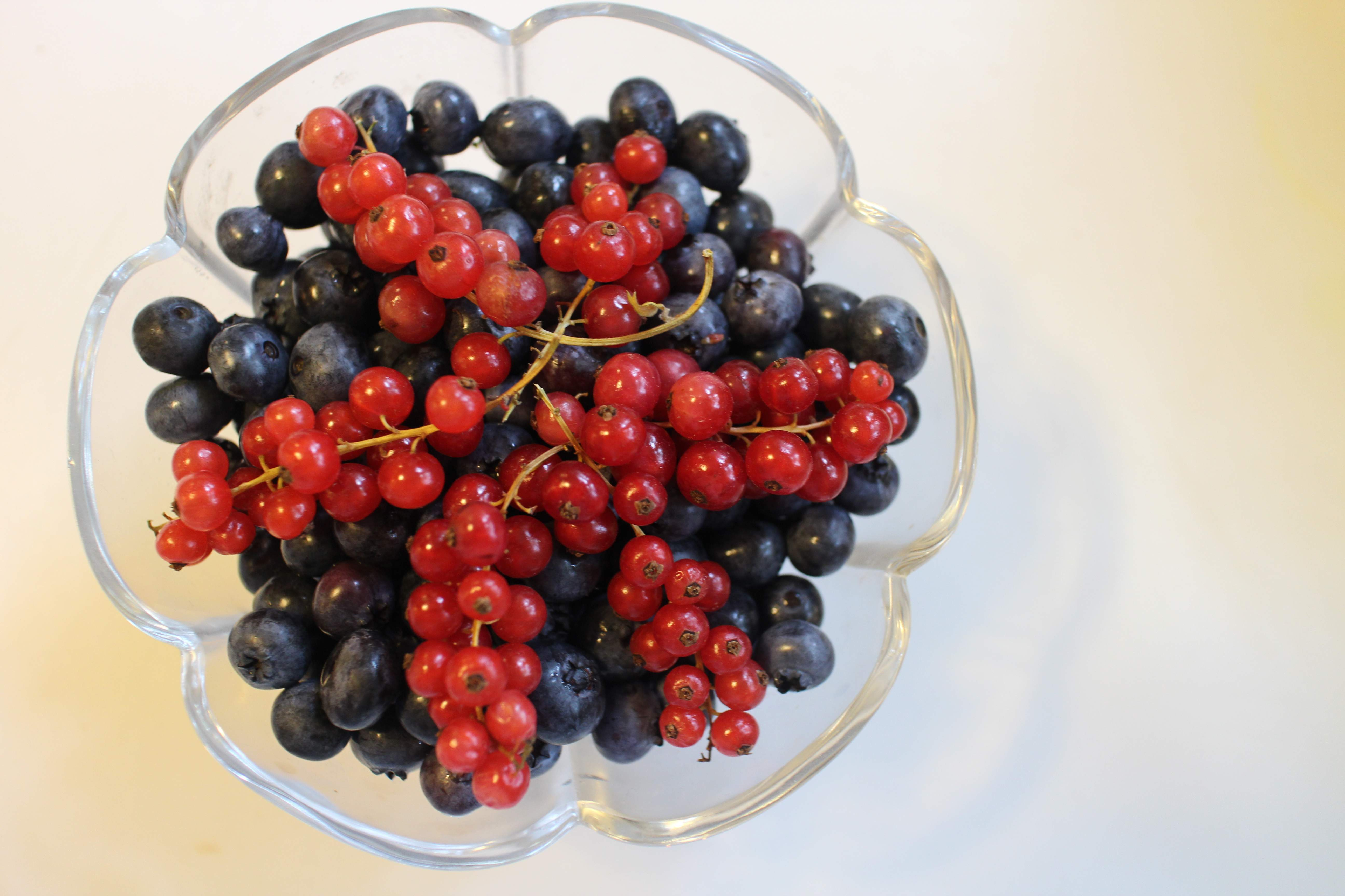 Nice Images Collection: Currants Desktop Wallpapers