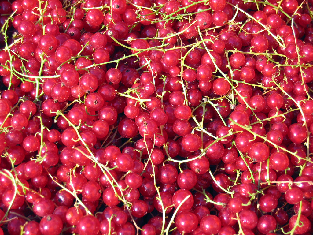 HQ Currants Wallpapers | File 1057.97Kb