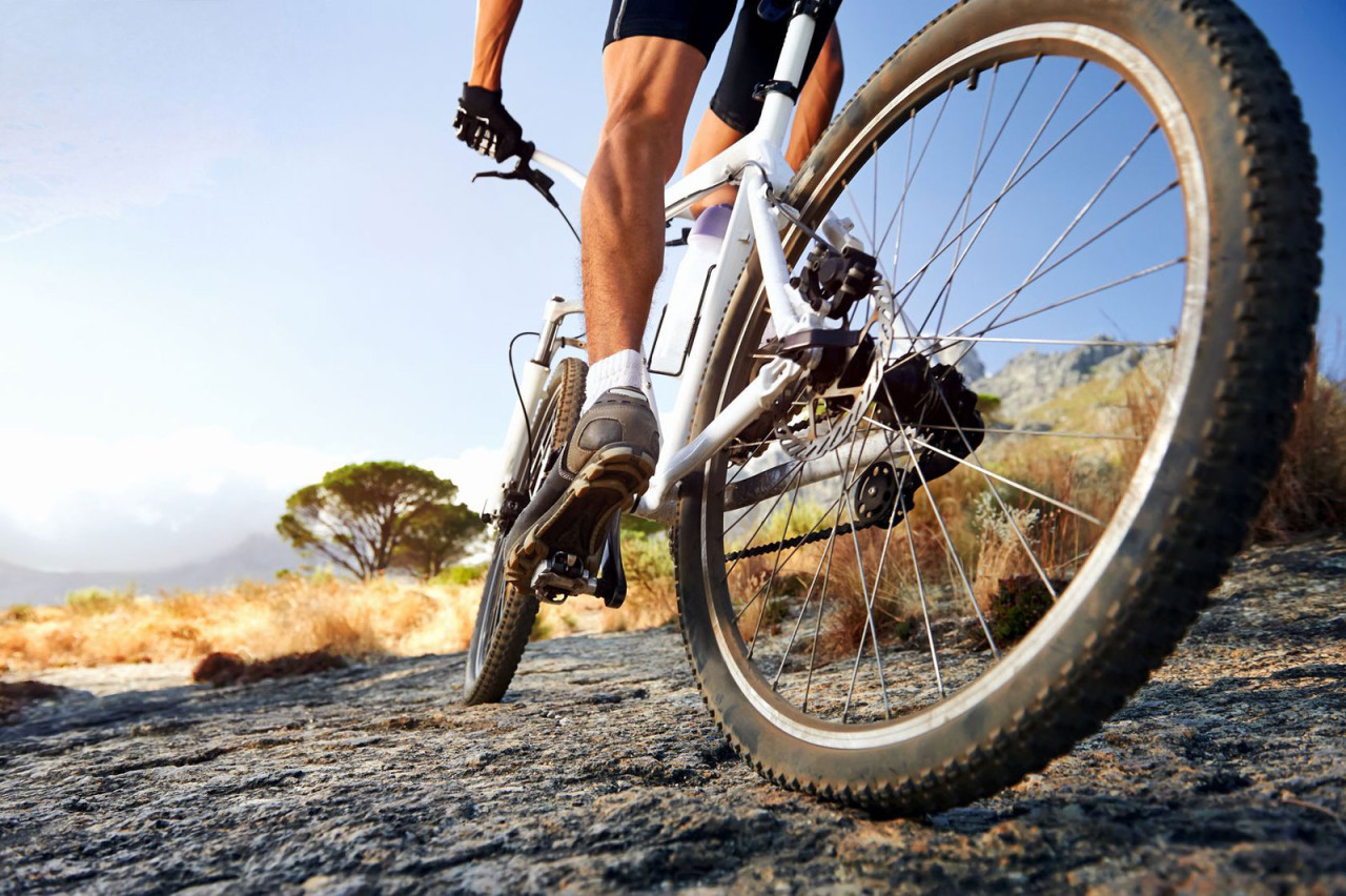 HD Quality Wallpaper | Collection: Sports, 1280x852 Cycling