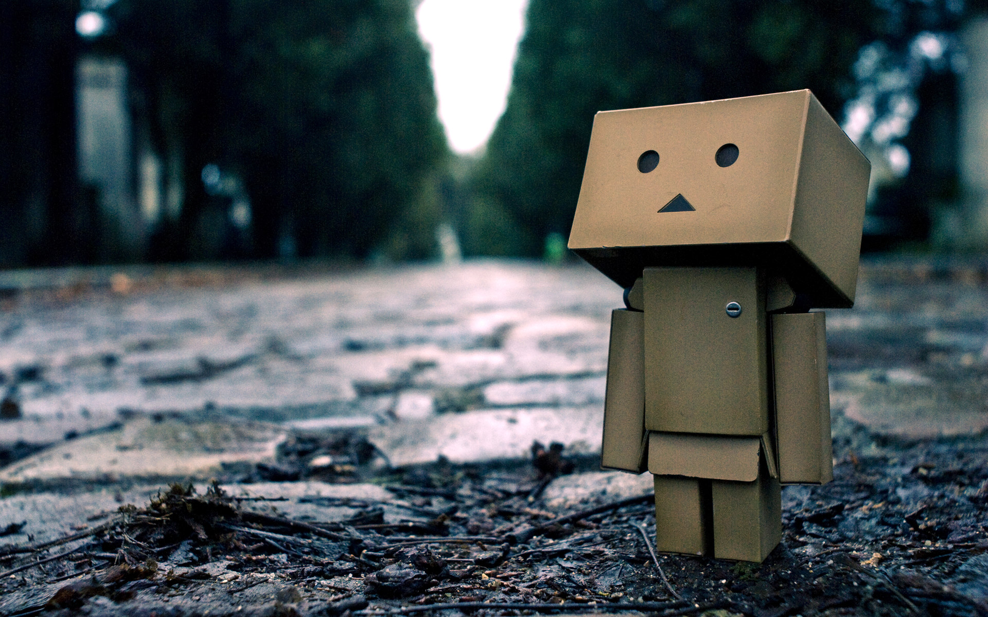 Images of Danbo | 1920x1200