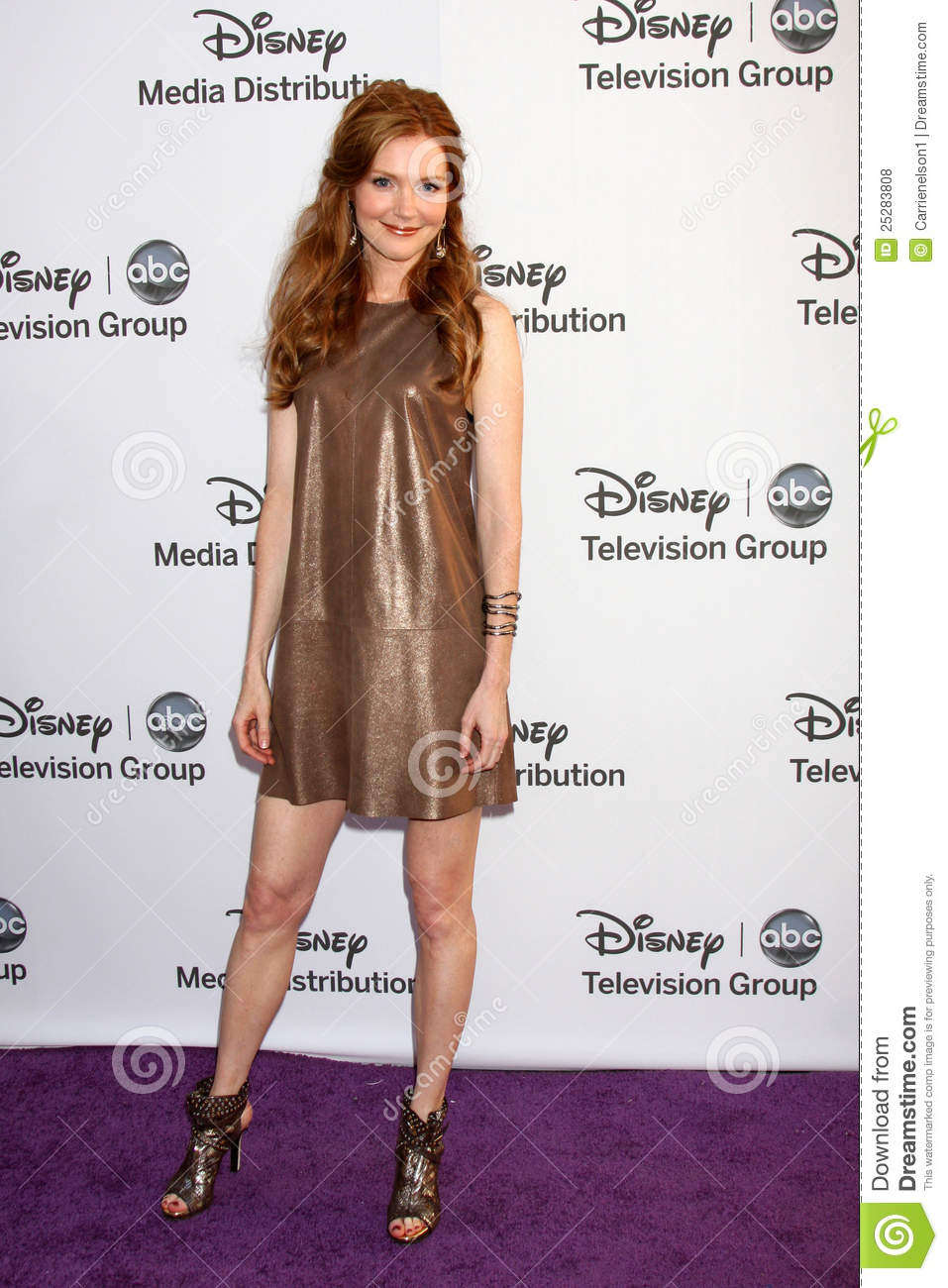 HQ Darby Stanchfield Wallpapers | File 146.31Kb