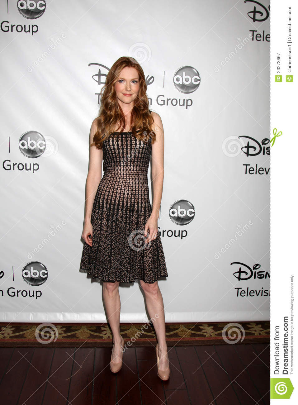 Images of Darby Stanchfield | 957x1300