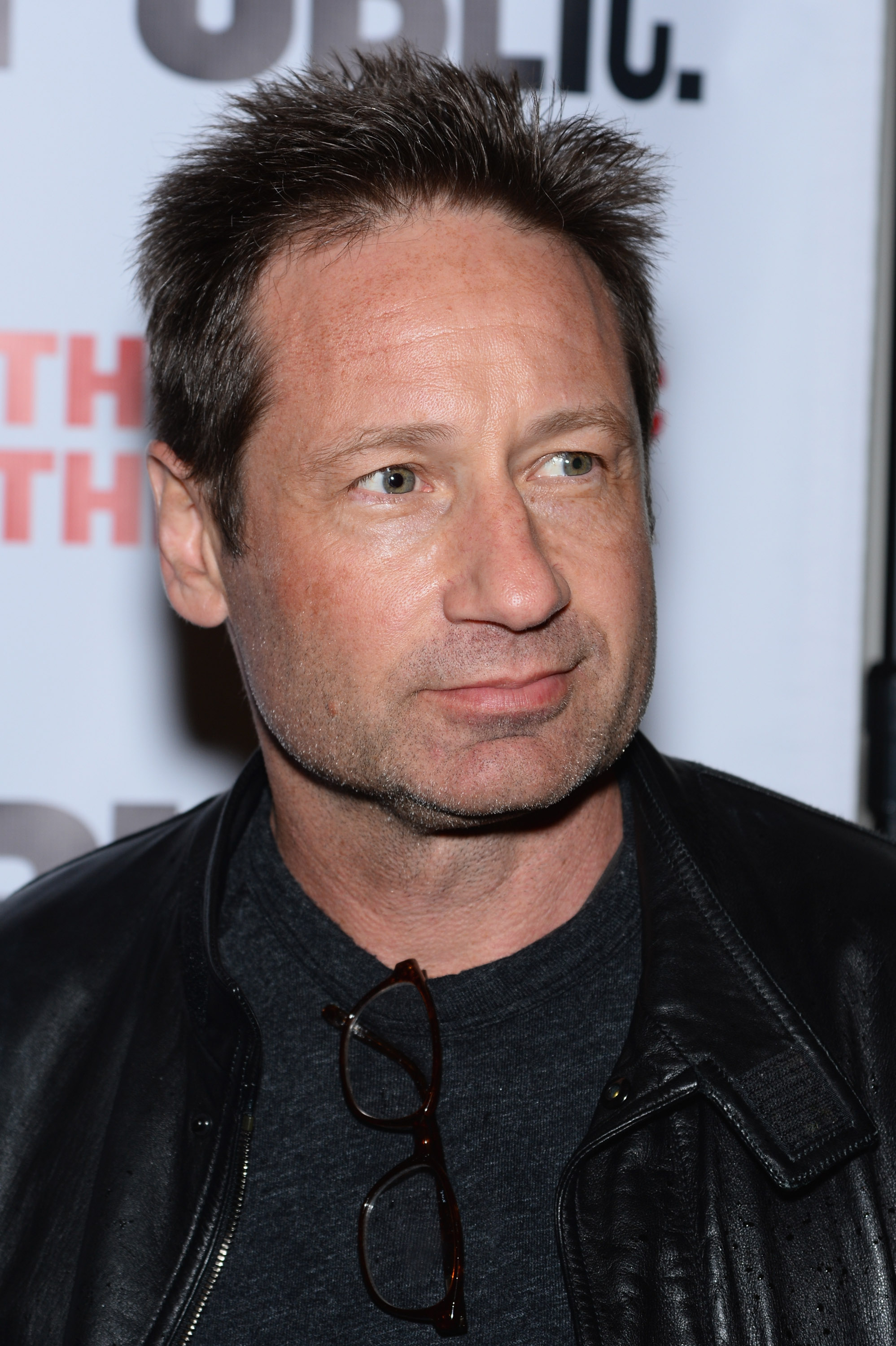 HQ David Duchovny Wallpapers | File 844.69Kb