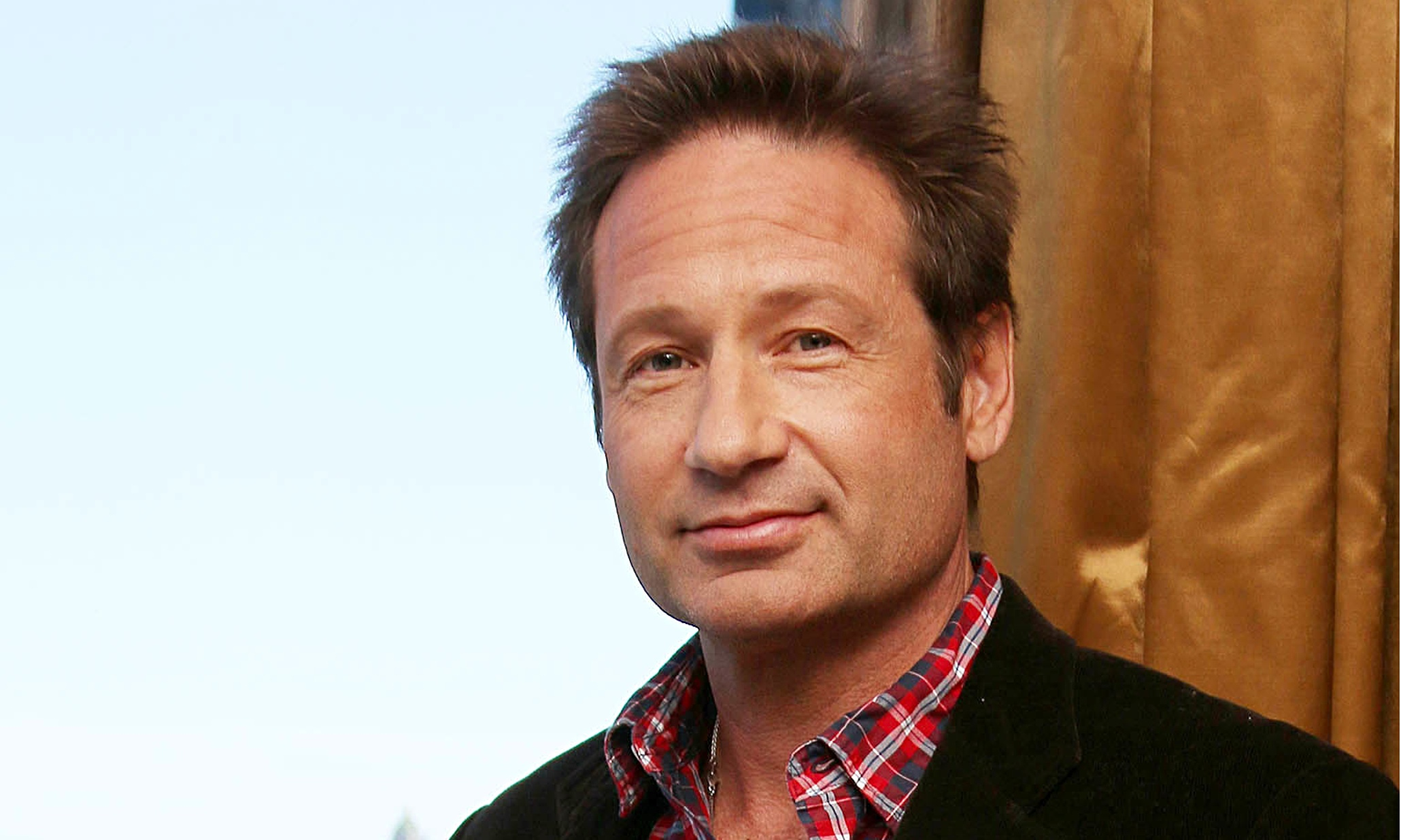 David Duchovny Backgrounds on Wallpapers Vista
