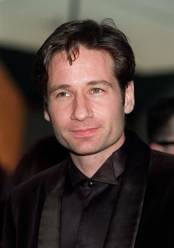 HQ David Duchovny Wallpapers | File 23.1Kb