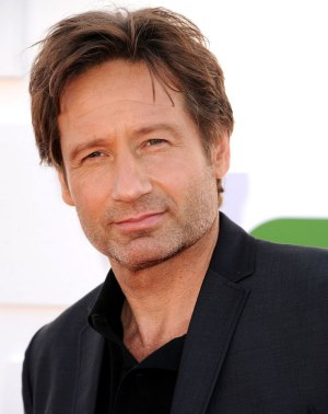 David Duchovny High Quality Background on Wallpapers Vista