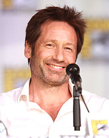 High Resolution Wallpaper | David Duchovny 220x279 px