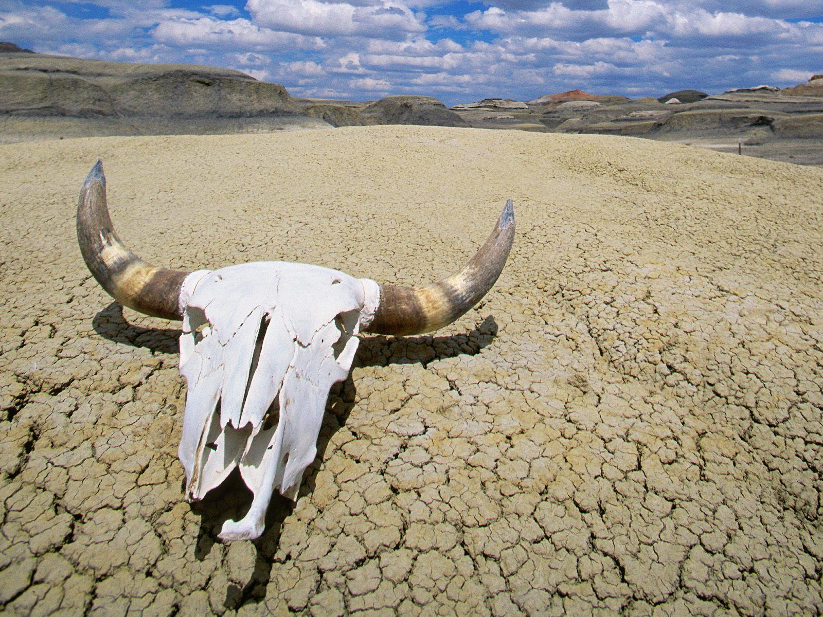High Resolution Wallpaper | Death Valley 1600x1200 px