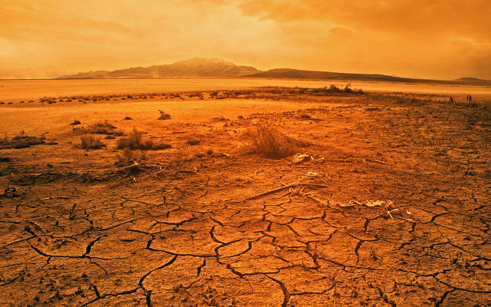 Nice Images Collection: Desert Desktop Wallpapers