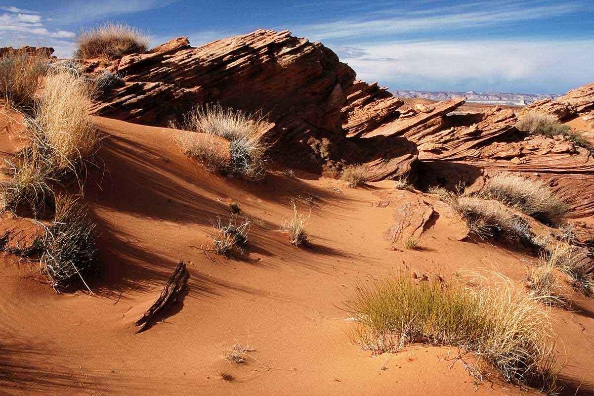 Desert Backgrounds, Compatible - PC, Mobile, Gadgets| 1202x801 px