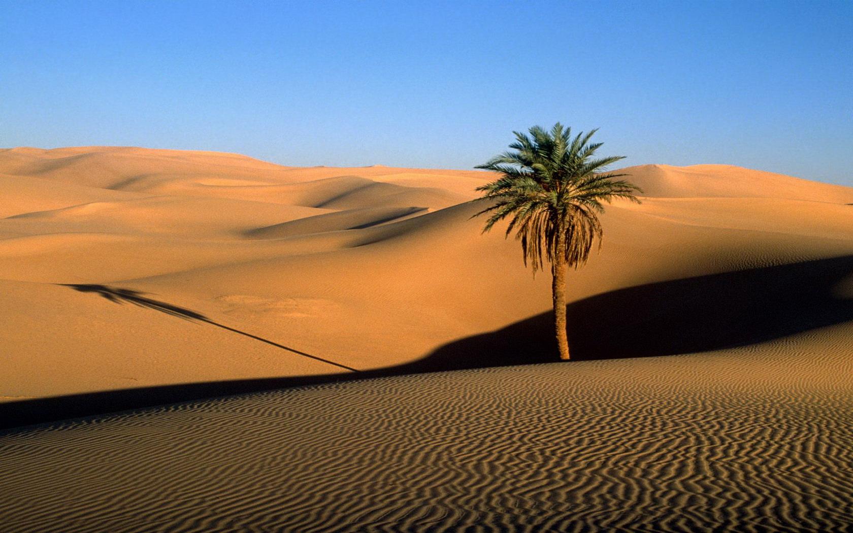 1680x1050 > Desert Wallpapers
