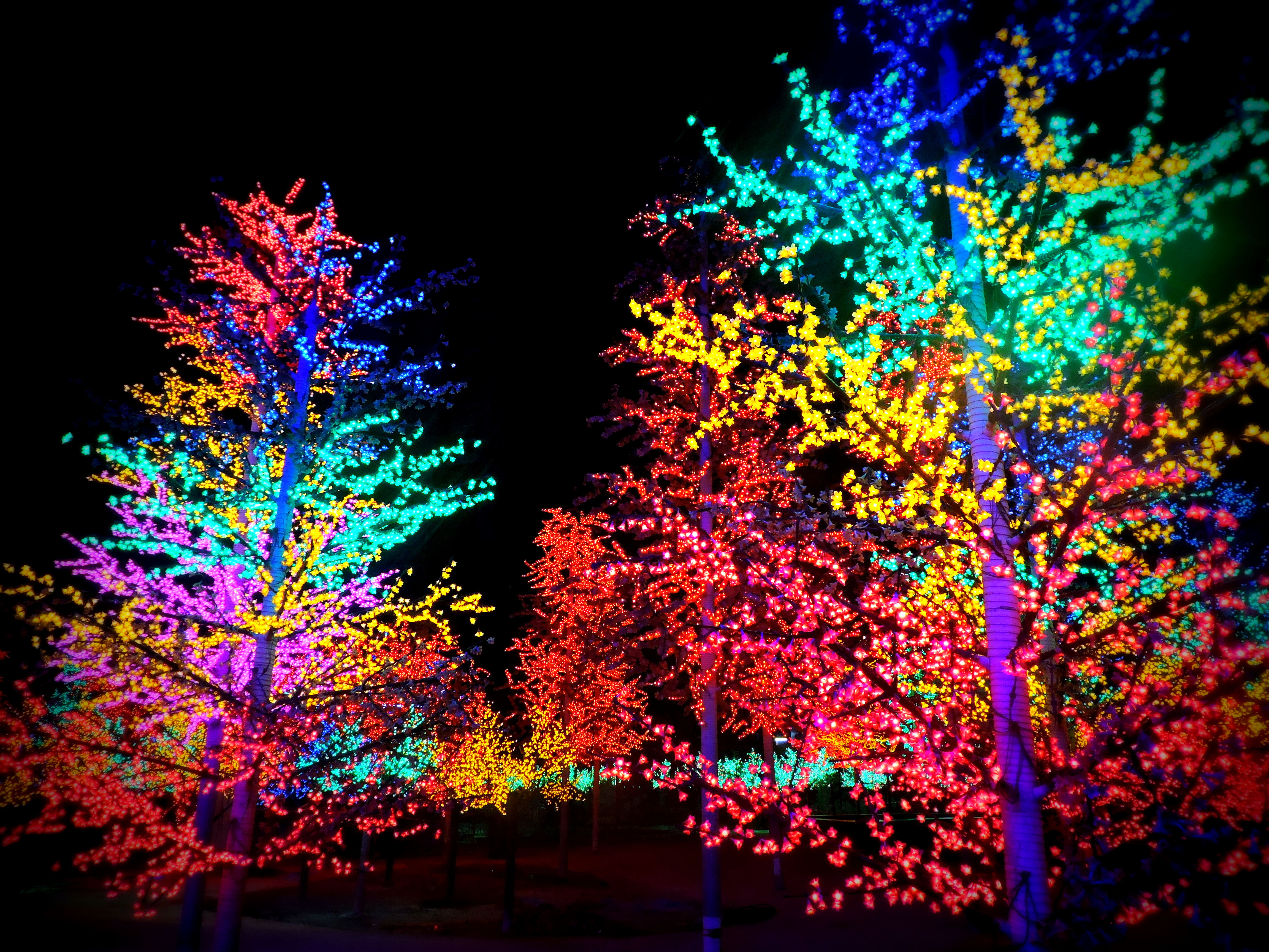 Digital Light Backgrounds, Compatible - PC, Mobile, Gadgets| 4608x3456 px