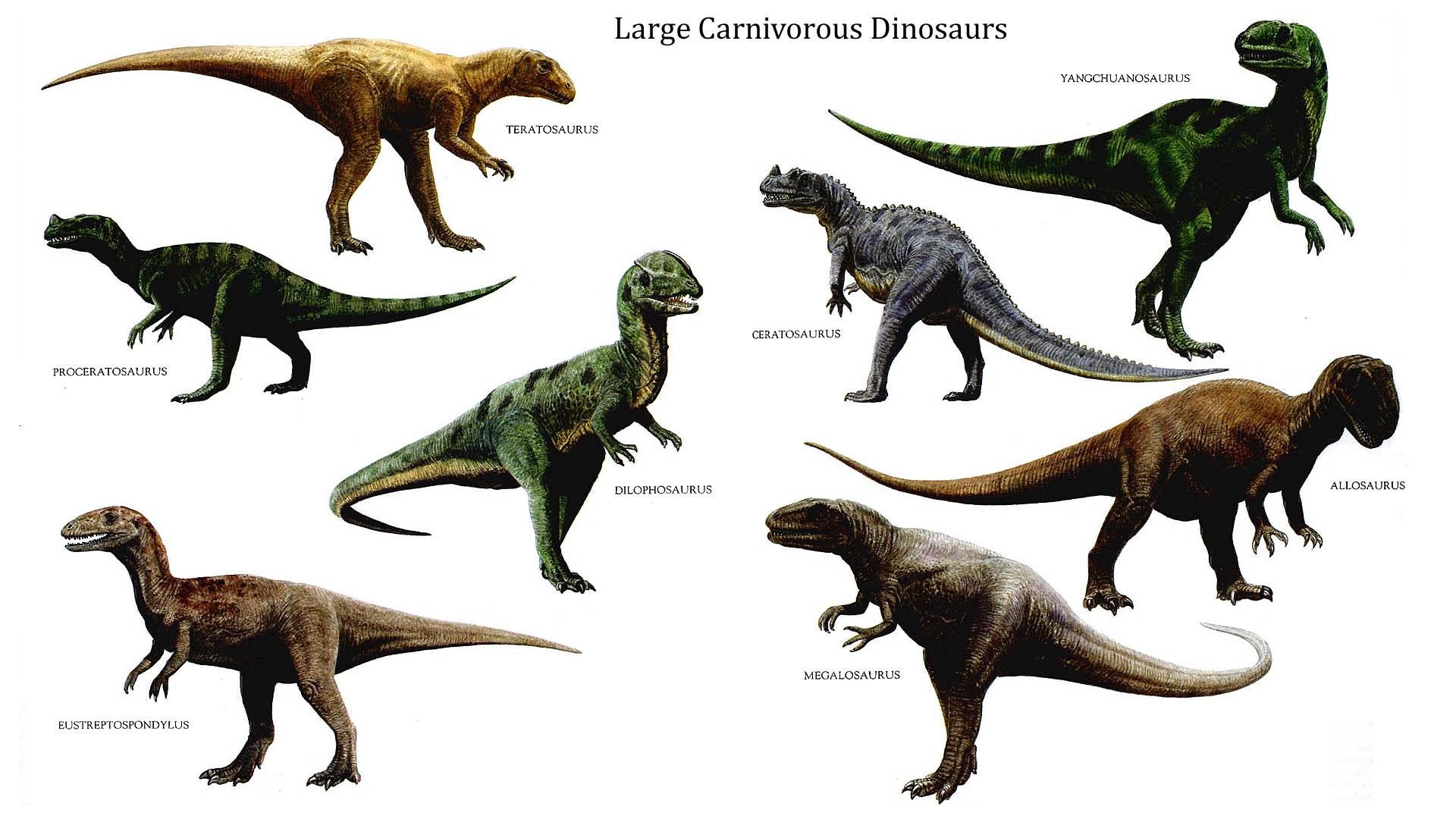 Nice wallpapers Dinosaur 1920x1080px