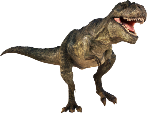 Dinosaur Pics, Animal Collection