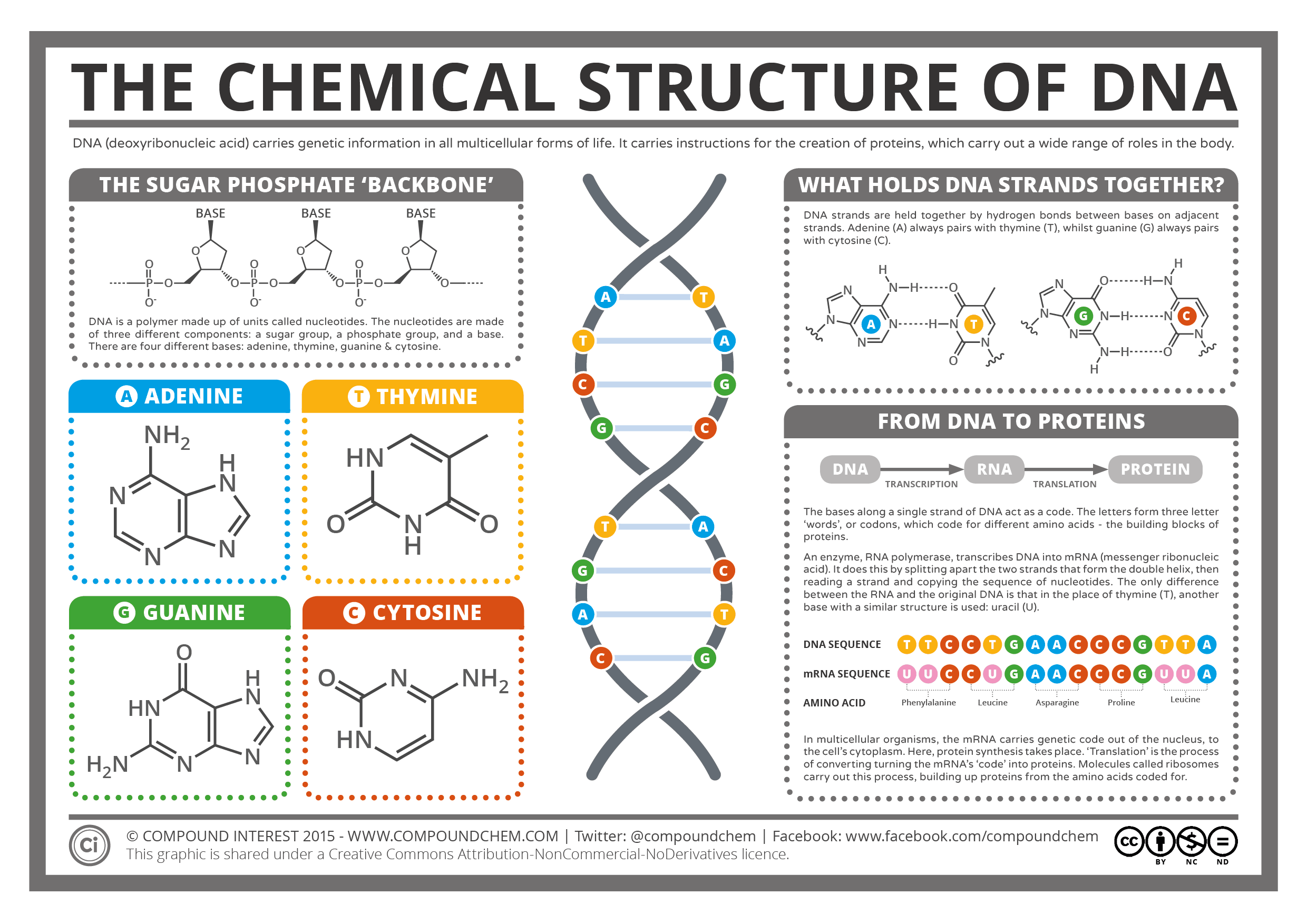 HQ DNA Structure Wallpapers | File 171.44Kb