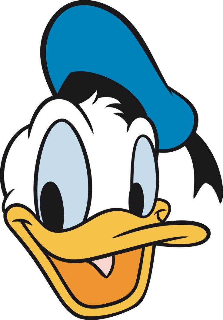 Amazing Donald Duck Pictures & Backgrounds