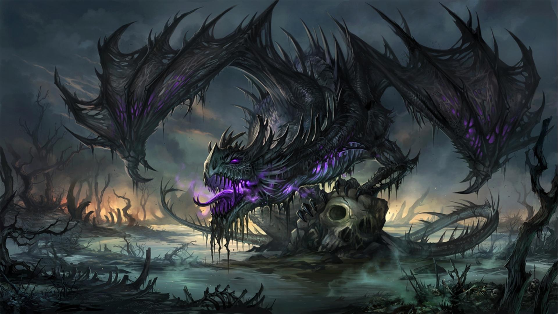 Dragon Pics, Artistic Collection