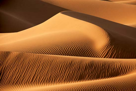 Images of Dune | 550x367