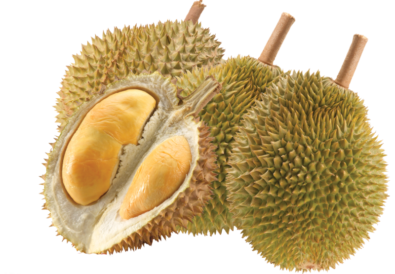 Nice wallpapers Durian 800x555px