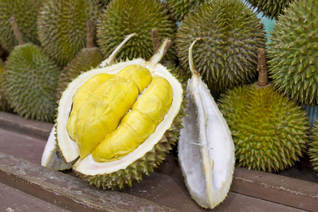 Amazing Durian Pictures & Backgrounds