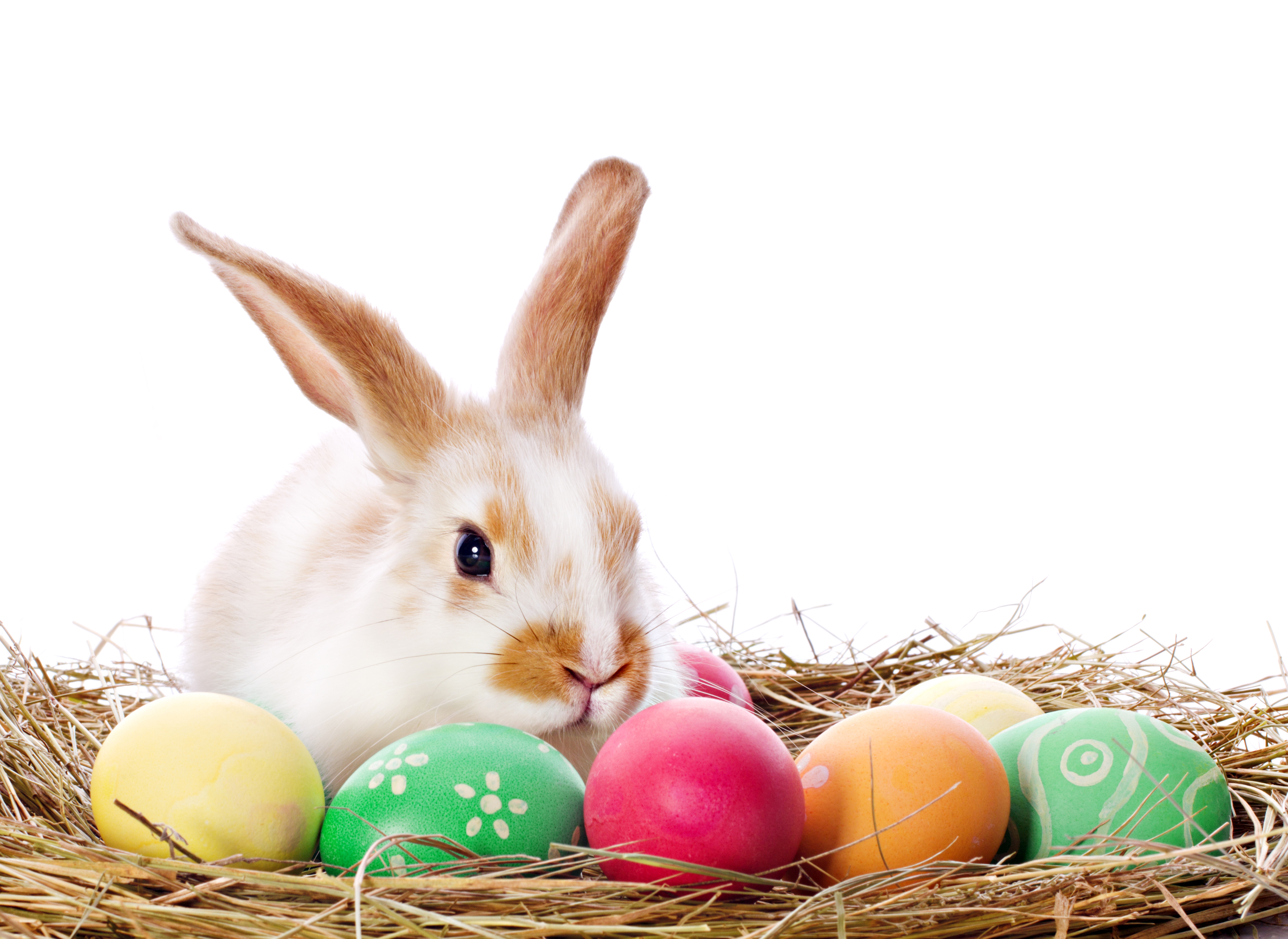 Easter High Quality Background on Wallpapers Vista