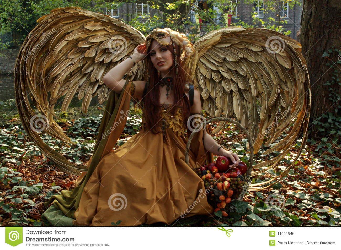 Images of Elf Fairy | 1300x954