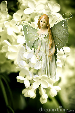 Amazing Elf Fairy Pictures & Backgrounds
