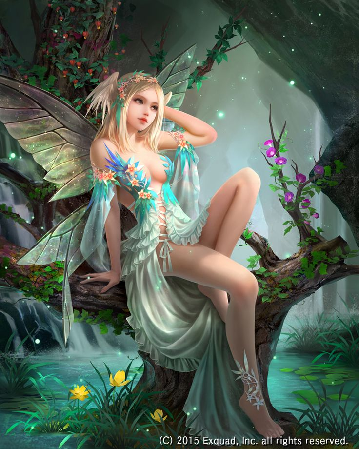 Nice wallpapers Elf Fairy 736x920px