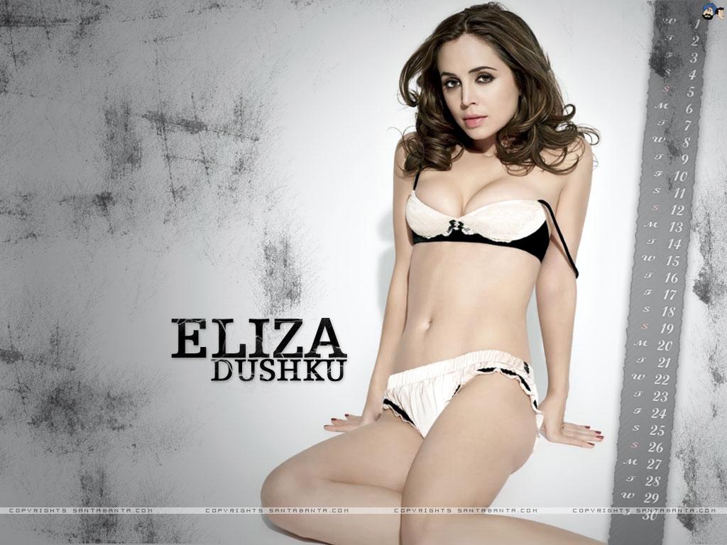 HD Quality Wallpaper | Collection: Celebrity, 1024x768 Eliza Dushku