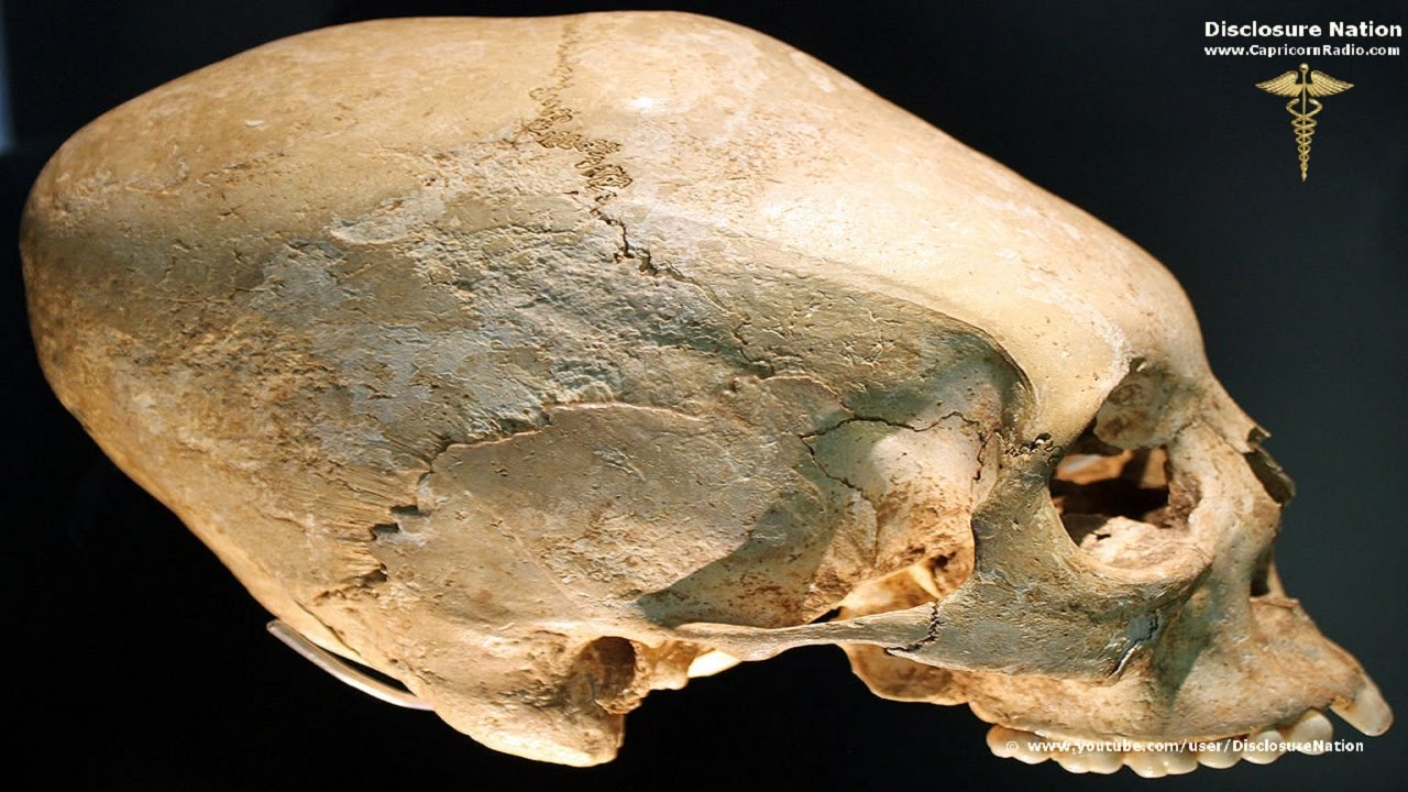 HQ Elongated Skull Wallpapers | File 178.92Kb