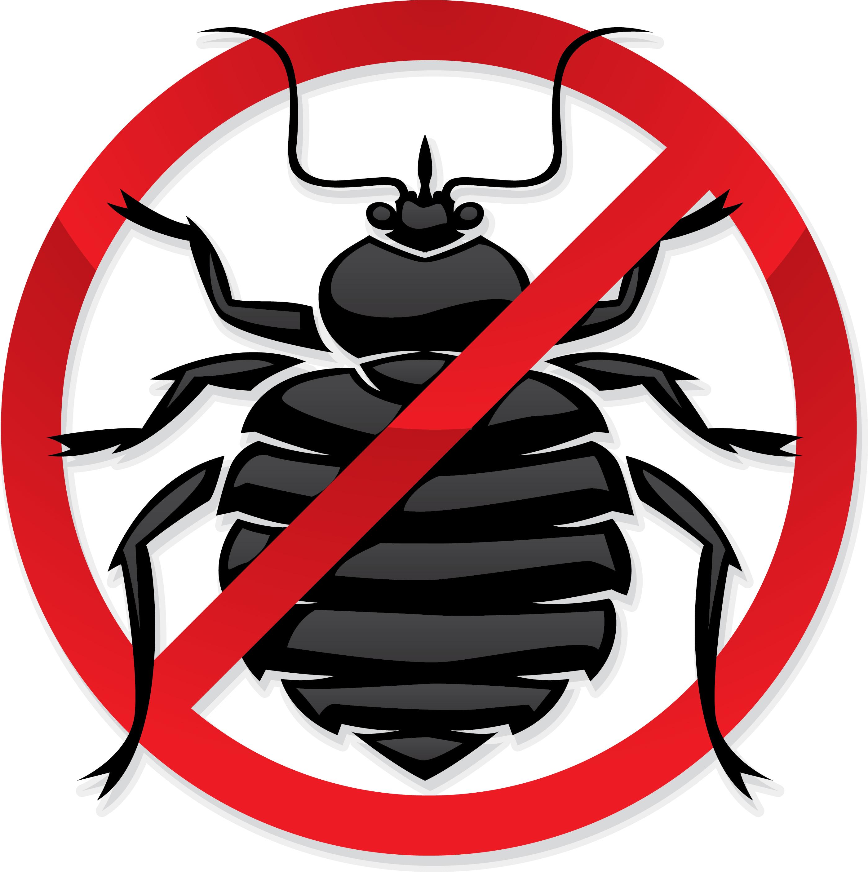 Exterminators Backgrounds, Compatible - PC, Mobile, Gadgets| 2800x2813 px