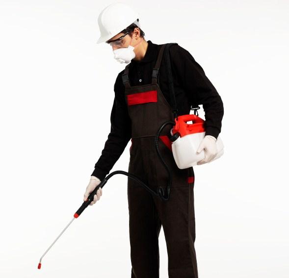 Exterminators Backgrounds, Compatible - PC, Mobile, Gadgets| 589x567 px