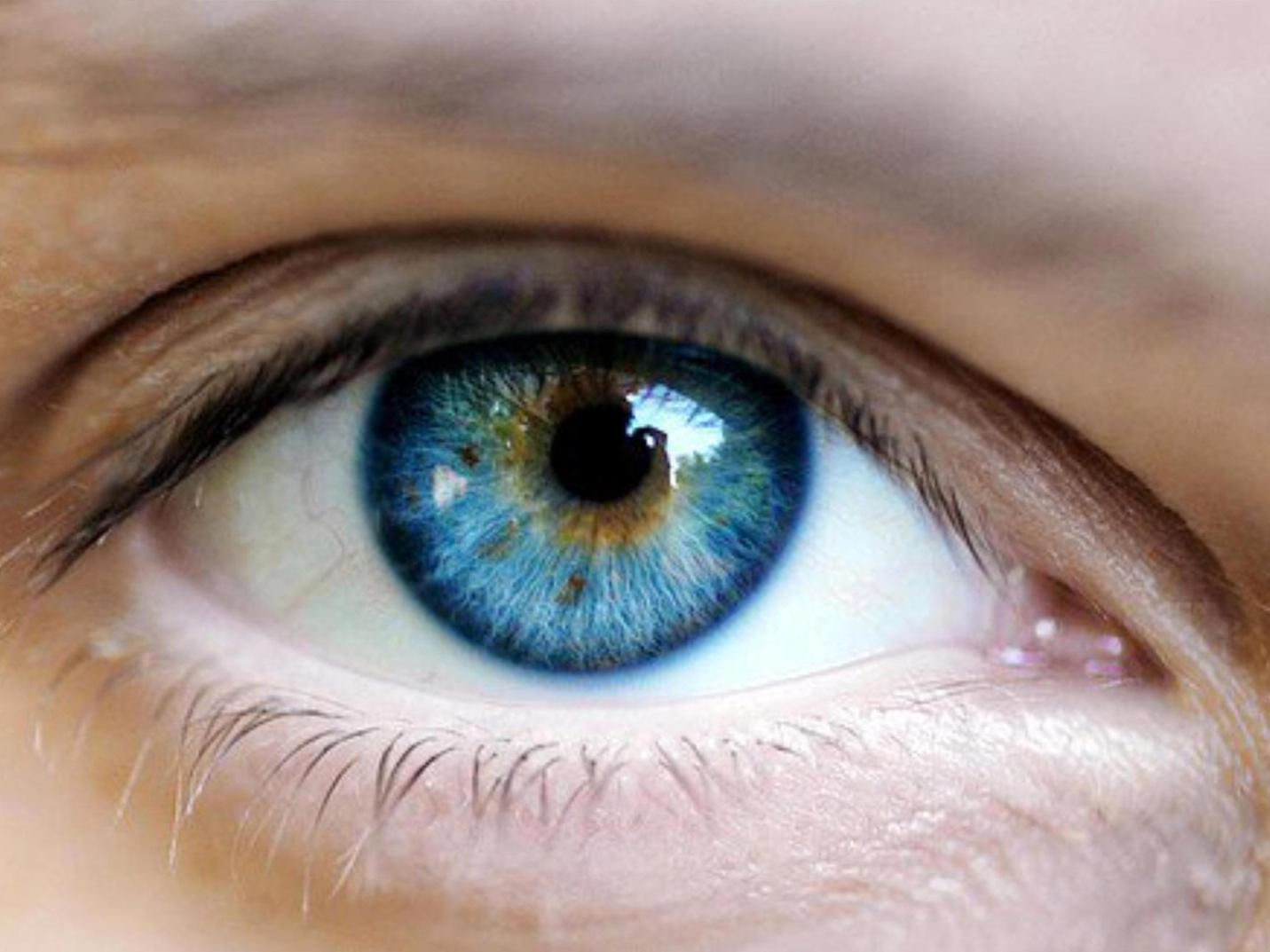 1431x1073 > Eye Wallpapers