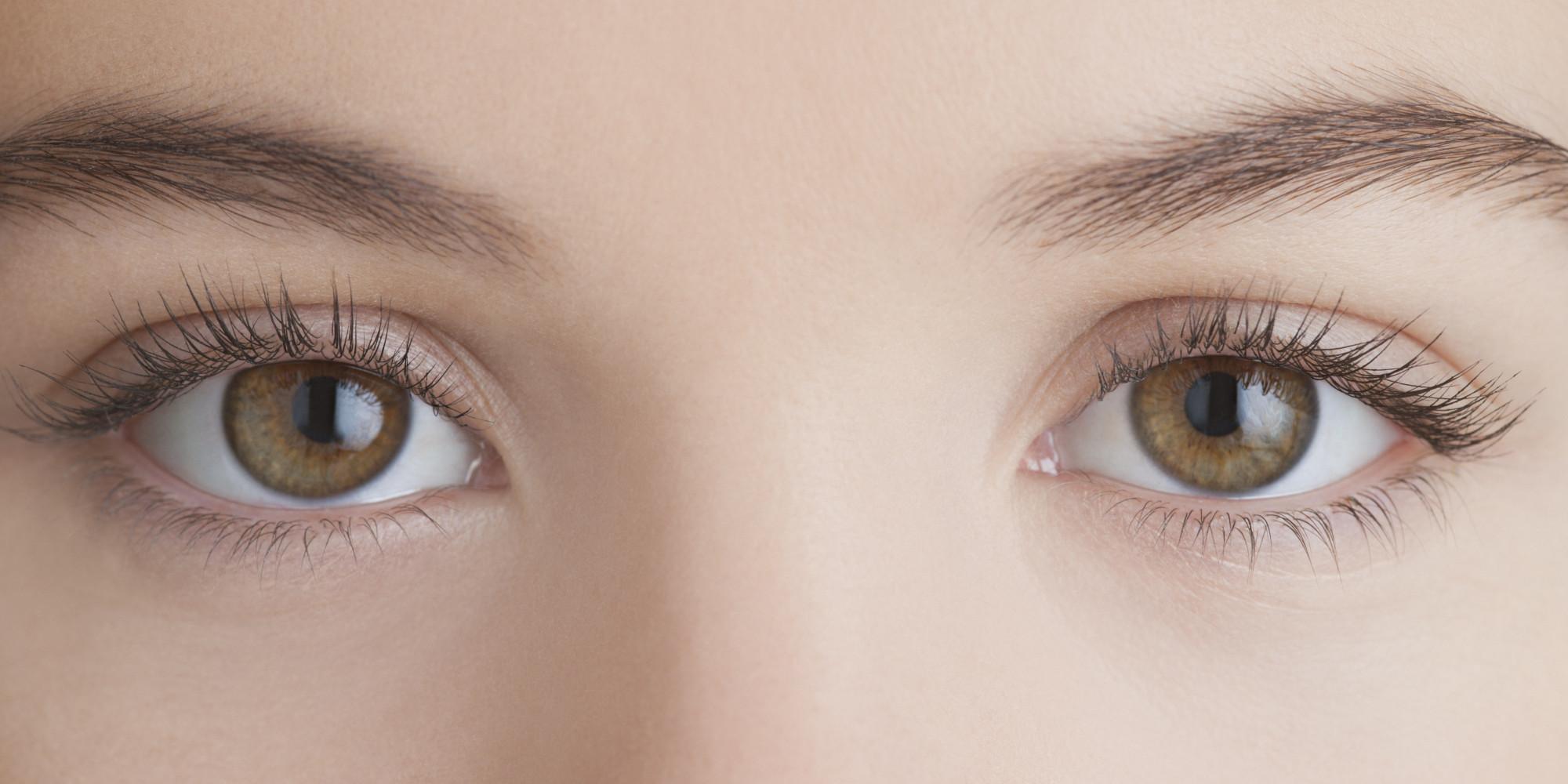 Eye Pics, Animal Collection