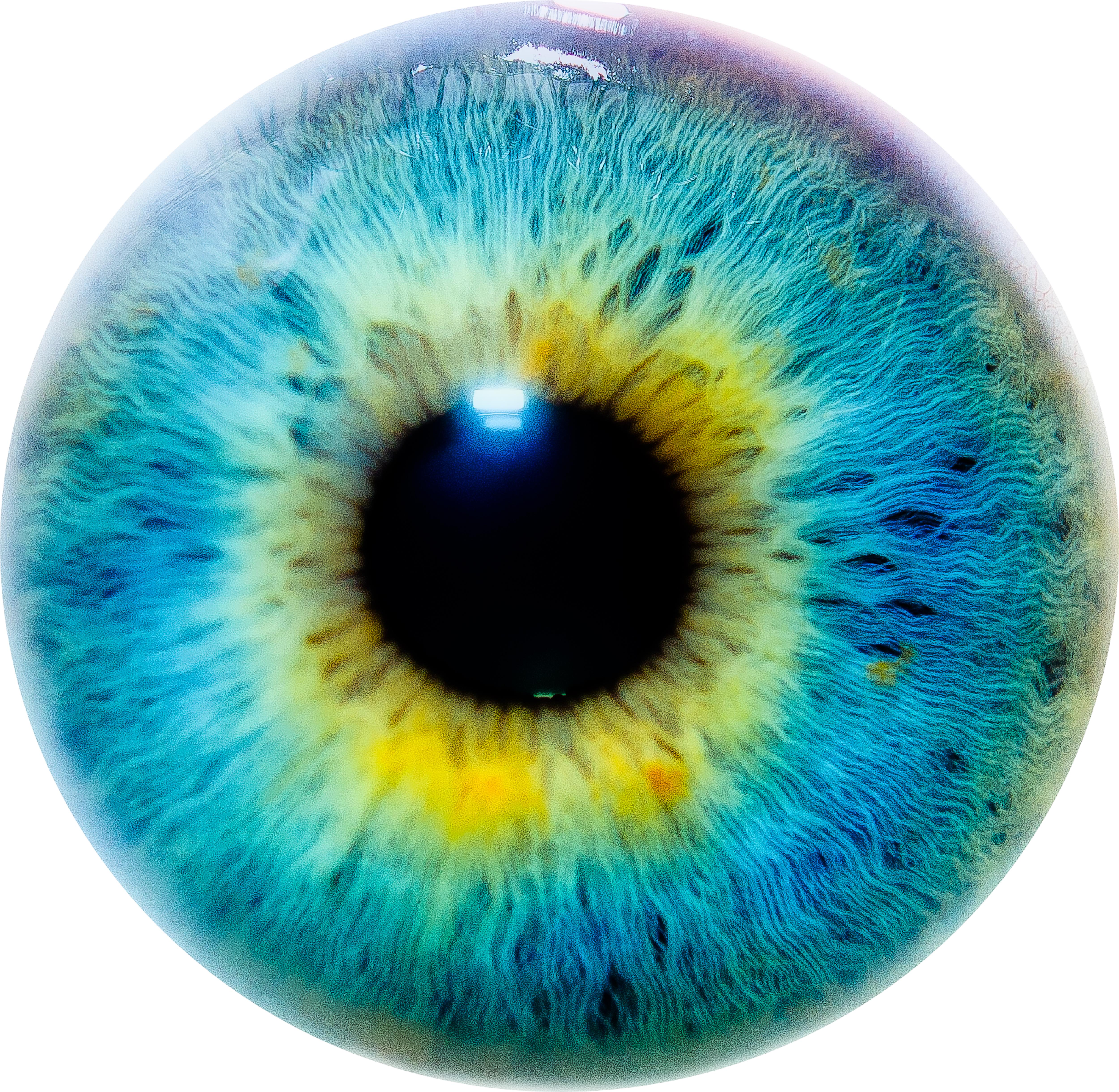 High Resolution Wallpaper | Eye 5000x4880 px