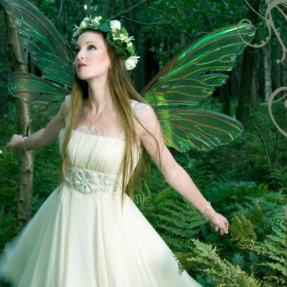 Images of Fairy | 562x562
