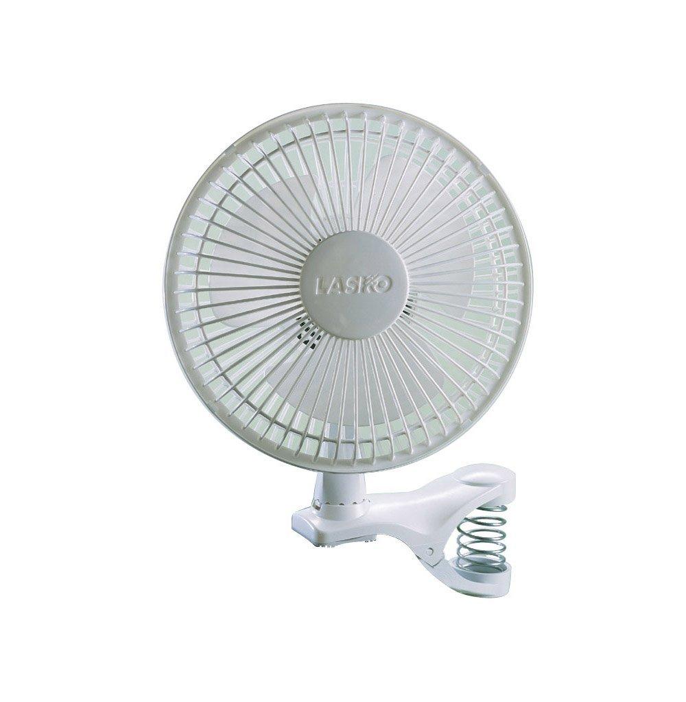Fan Backgrounds, Compatible - PC, Mobile, Gadgets| 1000x1023 px