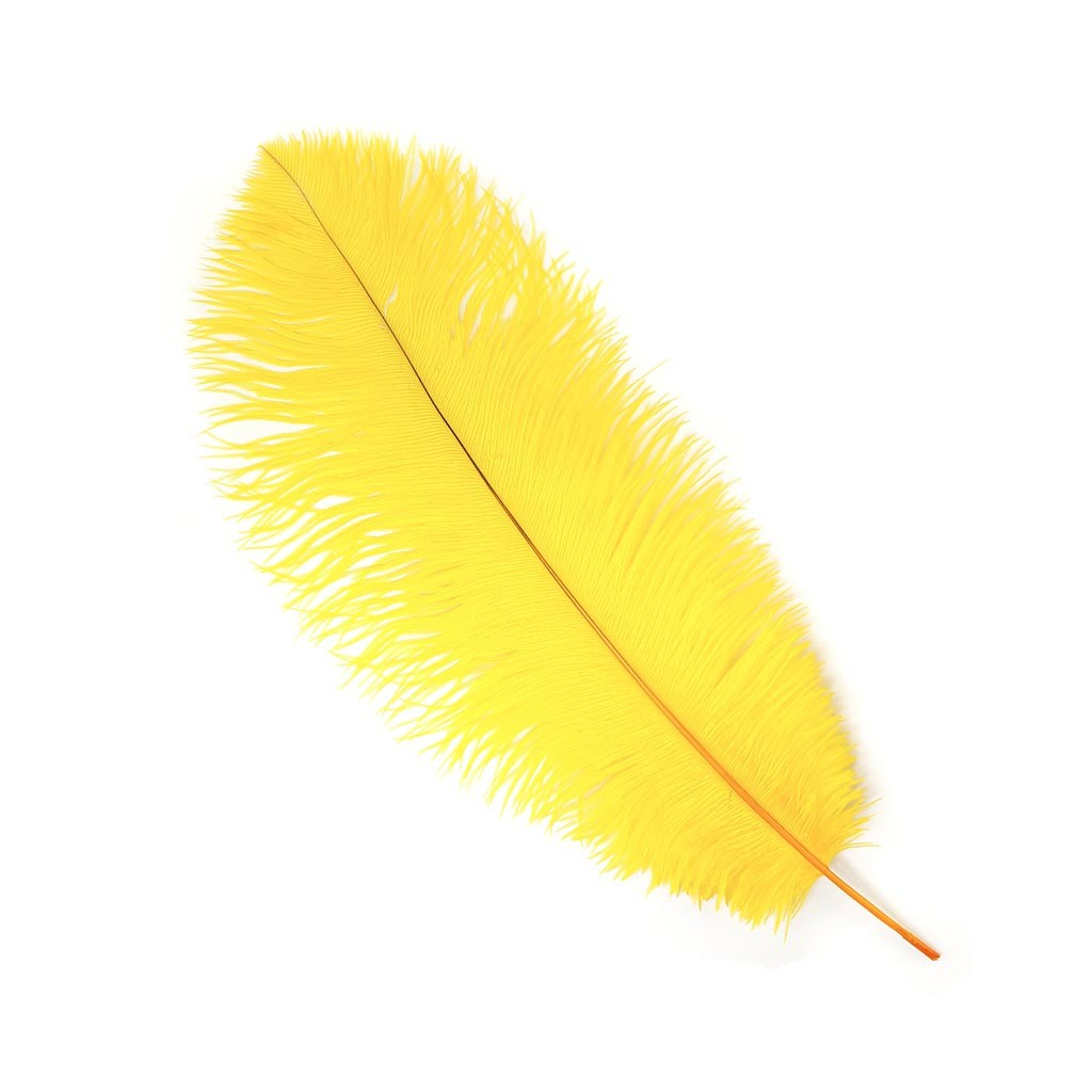 Feather Backgrounds, Compatible - PC, Mobile, Gadgets| 1024x1024 px