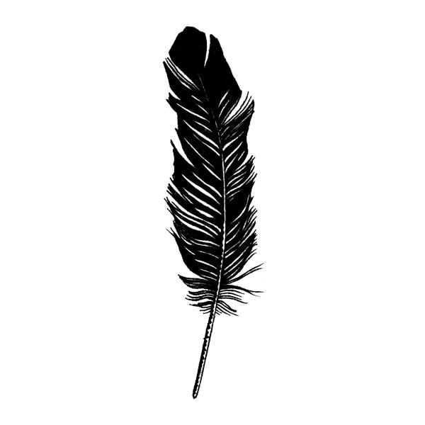 Images of Feather | 600x600