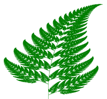 Nice Images Collection: Fern Desktop Wallpapers