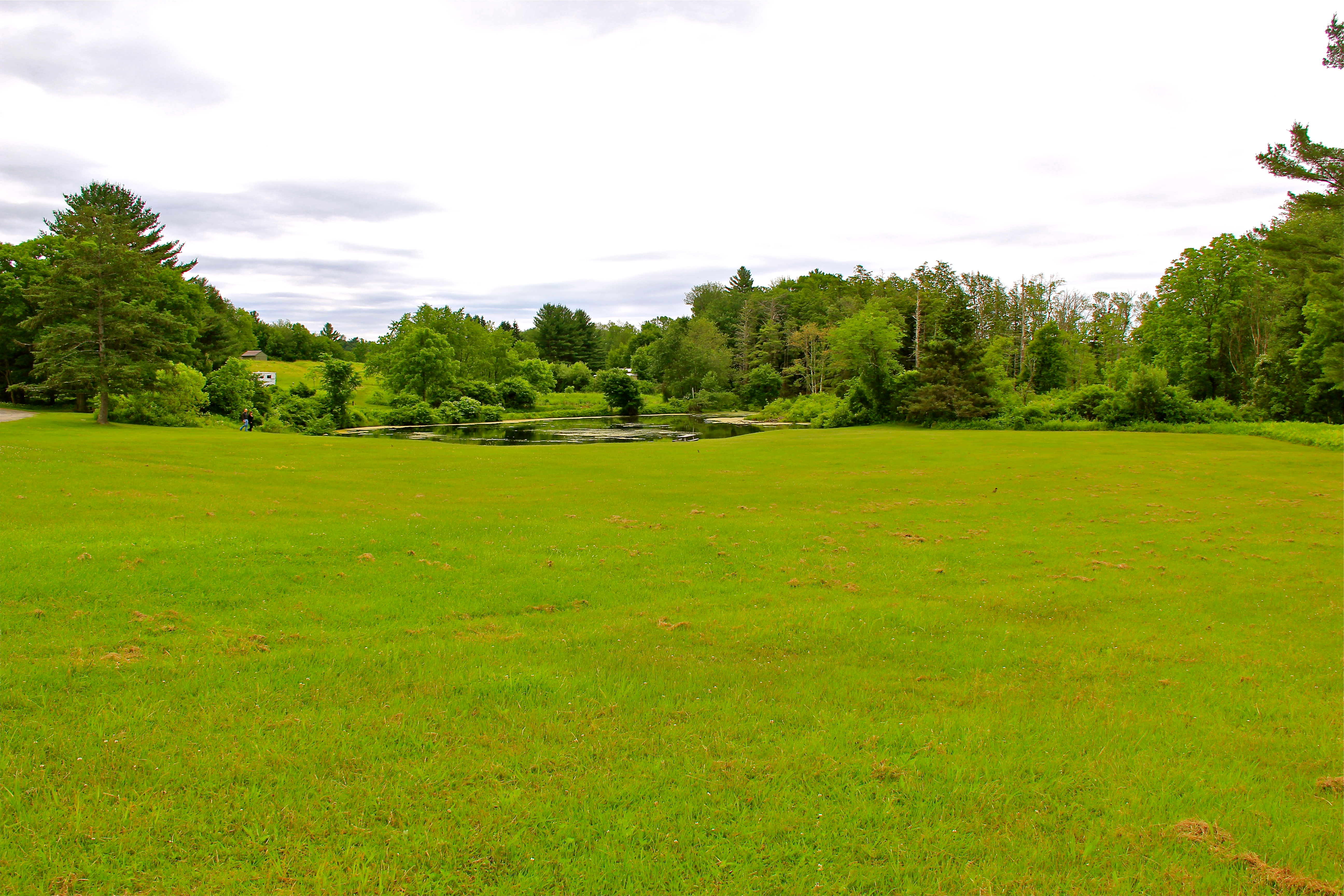 Field #10