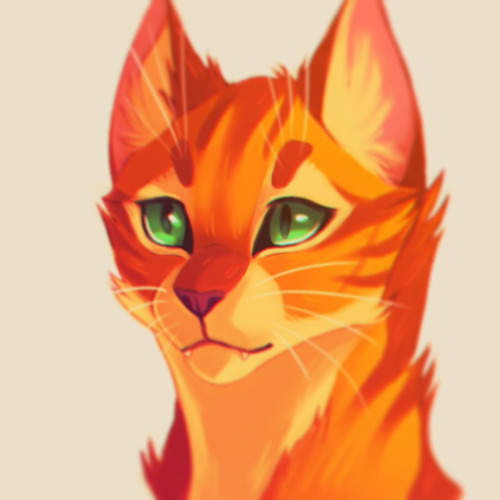 Firestar High Quality Background on Wallpapers Vista